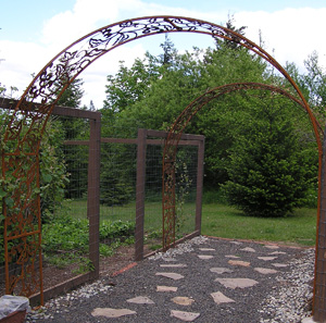 Custom grape vine garden trellis